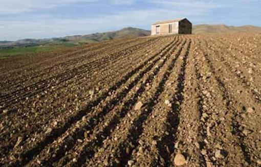 Inail, in Piemonte oltre 10 milioni di euro per la sicurezza nelle piccole aziende agricole