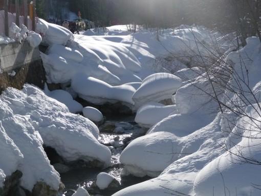 neve alpi arpa