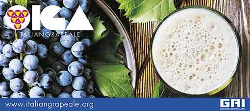 Birra, meglio se IGA!!!  Al via il primo concorso internazionale dedicato alle Italian Grape Ale