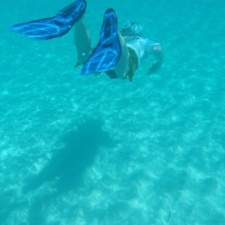 Nel 2022 a Viverone i mondiali di nuoto pinnato - Foto di repertorio