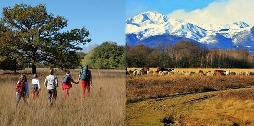 Candelo: Camminata con Gli Alpini dedicata a Ti Aiuto io