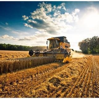 agricoltura regione