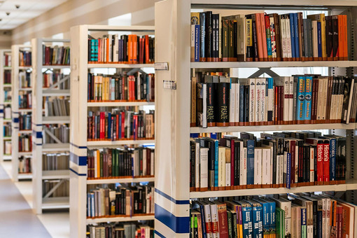 biblioteca vigliano
