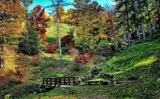 Parco della Burcina - Pollone