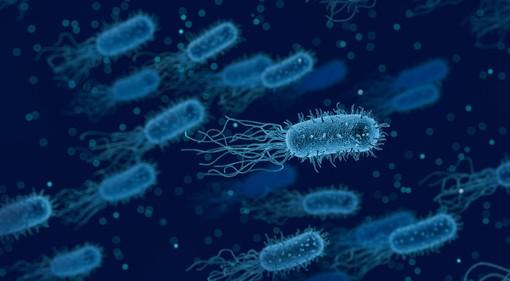 """""""Anche i batteri ballano"""": musica e salute al convegno nel salone Biverbanca"""