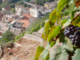 Uncem, ultimo giorno per la mappatura borghi alpini ed edifici alta efficienza energetica