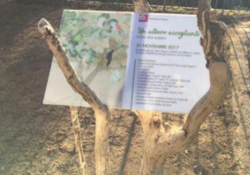 """Parco Burcina, Pd: """"Sparisce un cartello commemorativo e non si conoscono i progetti di sviluppo"""""""