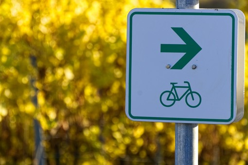 Piste ciclabili e mobilità sostenibile, l'interessante analisi di una lettrice