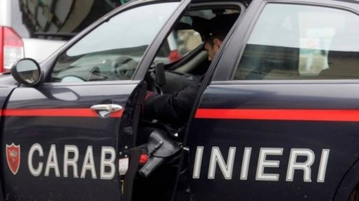 Dal Nord Ovest - Tragedia a Carema, trovata morta una donna di 48 anni all'interno di una cantina