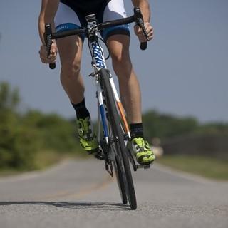 ciclopedata