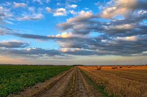 regione agricoltura