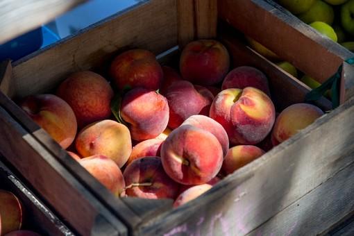 Furto con destrezza a Cossato, falso venditore di frutta ruba 300 euro a un anziano