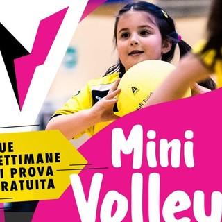 Virtus Biella: aperte le iscrizioni alla nuova stagione del MiniVolley