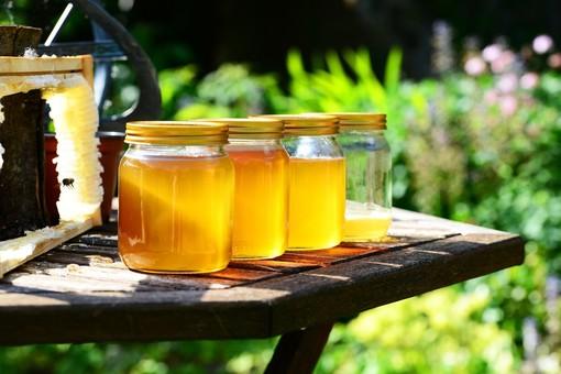 Miele, foto Pixabay
