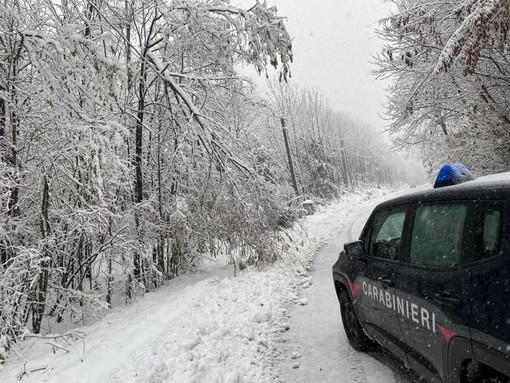 Un recente intervento dei Carabinieri della provincia di Biella