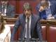 """Roberto Pella (FI): """"La Camera approva all'unanimità mozione su riconoscimento obesità come malattia """""""