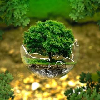 """Giornata Mondiale della Terra, Marnati: """"Prendersi cura del pianeta è atto di responsabilità verso le future generazioni"""""""