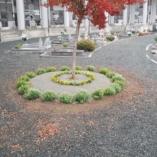cimiteri biella