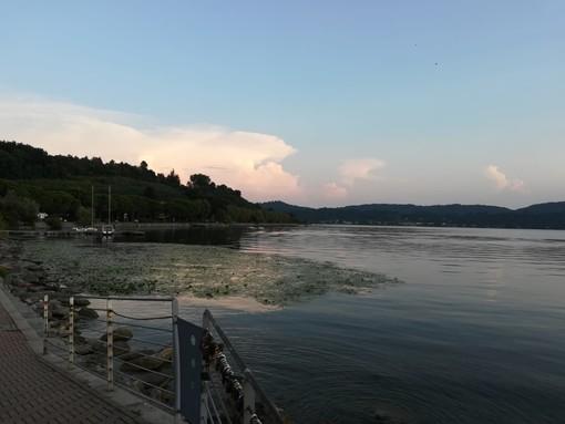 Petizione in atto contro l'acqua bassa del  lago di Viverone - Foto archivio newbiella.it