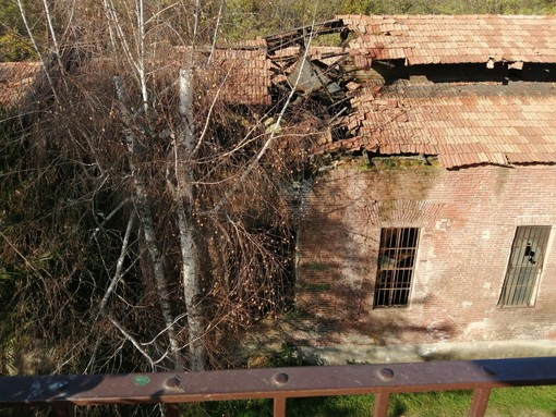 """Decadenza in via Cottolengo, una lettrice: """"Edificio fatiscente dove escono anche i ratti"""""""