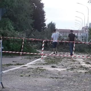 Vercellese devastato dal maltempo: chiesto lo stato d'emergenza